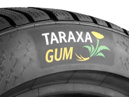 A Continental átadta gumipitypang kutató Taraxagum laboratóriumát